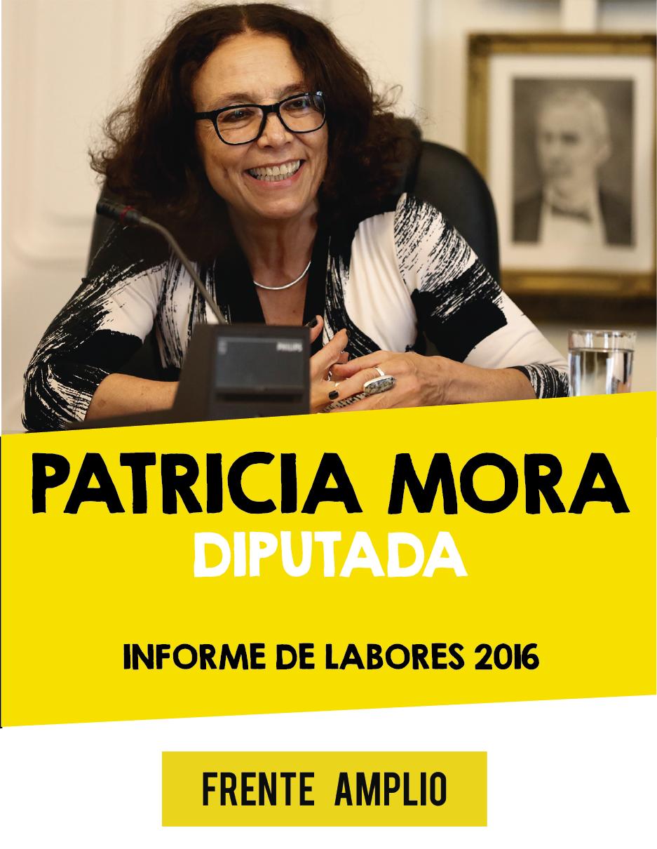 portada-patri-2016
